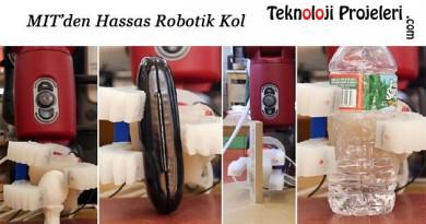 Hassas-Robotik-Kol