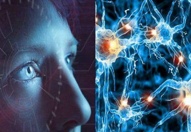 Zeka Seviyesi İle Beyin Hücreleri Arasındaki İlişki Ortaya Çıkarıldı!
