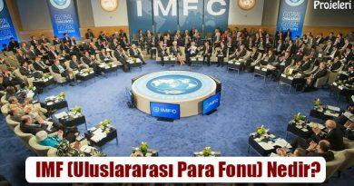 IMF (Uluslararası Para Fonu) Nedir? Amacı ve Görevleri Nelerdir?