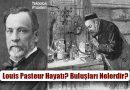Louis Pasteur Kimdir? Hayatı, Buluşları Nelerdir?