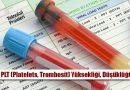 PLT (Platelets, Trombosit) Nedir? Yüksekliği, Düşüklüğü