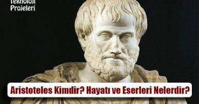 Aristoteles Kimdir? Hayatı ve Eserleri Nelerdir?