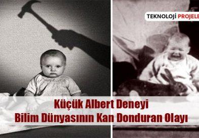 Küçük Albert Deneyi: Bilim Dünyasının Kan Donduran Olayı